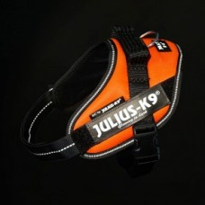 Julius K9 IDC Sele Mini UV Orange