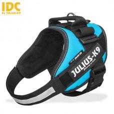Julius K9 IDC Sele Stl 0 Aquamarine