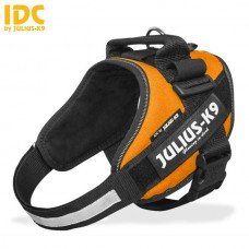 Julius K9 IDC Sele Stl 1 Orange