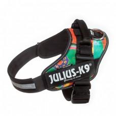 Julius K9 IDC Sele Stl 0 Reggae Canis
